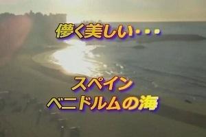 ベニドルム.jpg